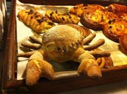 Crabs - from Sea to Sandwich (South Devon AONB)