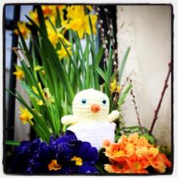 Lower Street Easter Chick Hunt