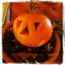 Alf's Half Term Pumpkin Fun