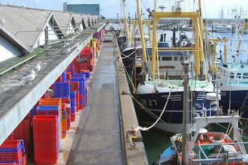 When the Boats Come In..... (South Devon AONB)